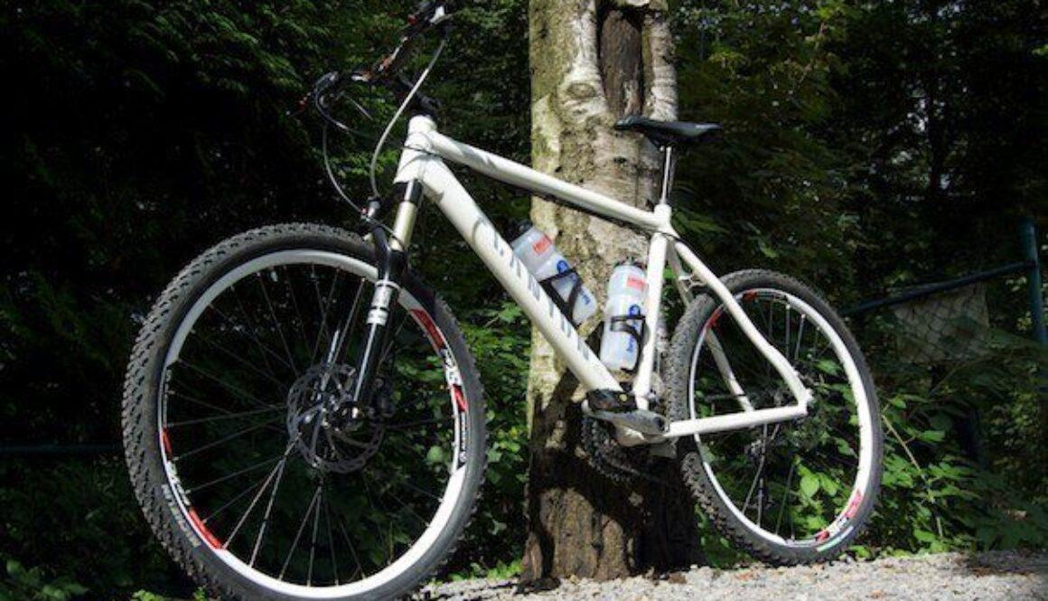 My new Bike21